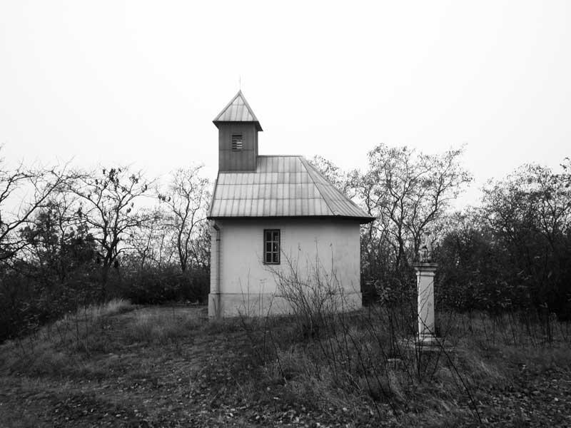 opatova11
